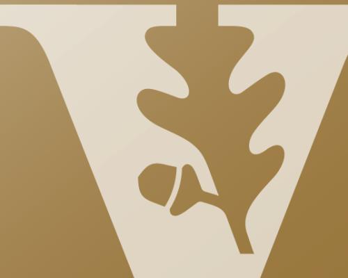 dev/38800/38800:profile