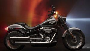 Gail's Harley-Davidson