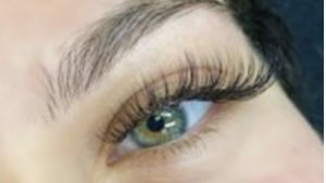 Beaudee Lash Bar