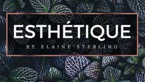 Esthétique by Elaine Sterling