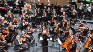 Lone Tree Symphony Orchestra