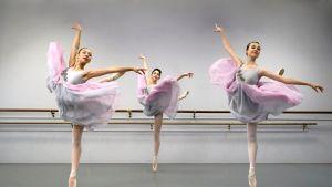 Pacific Festival Ballet