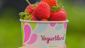 Yogurtland Fairfield