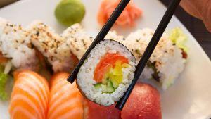 Piranha Killer Sushi
