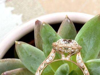 Dems Fine Jewelers
