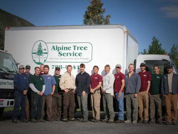 Alpine Tree Service
