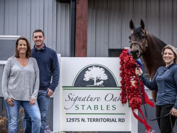 Signature Oak Stables