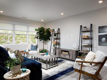 The New Home Company - Arizona