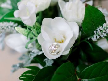 Marrying Magnolias