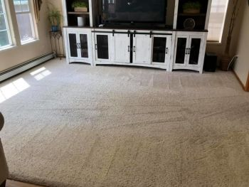 CPR Carpet Cleaning