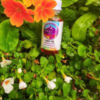 natures-bloom-cbd-chandler-949671
