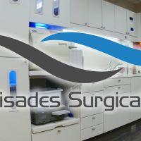 palisades-surgical-arts-46348