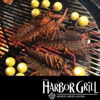 harbor-grill-restaurant-at-dana-point-58166
