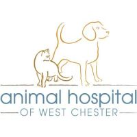 animal-hospital-of-west-chester-38878