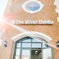the-silver-dahlia-124624