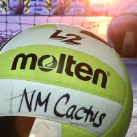 new-mexico-cactus-volleyball-club-2541589