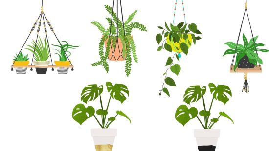8 Fun + Free Plant Art Printables
