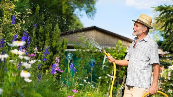 2 Safe At-Home Activities for Seniors