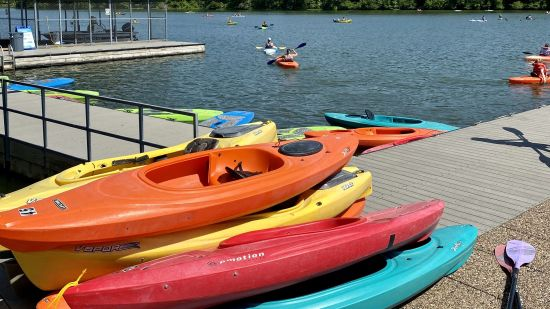 Paddle Your Way to Summer Fun