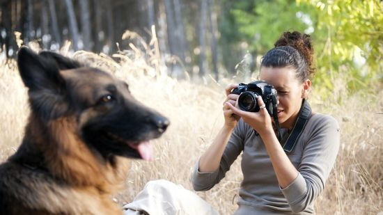 How to Photograph Your Pet