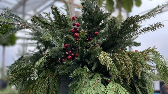 DIY Christmas Planter