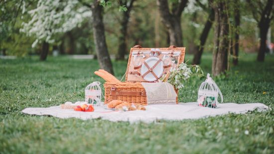 What to Bring to a Picnic