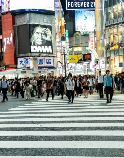 Japan Layover Tours
