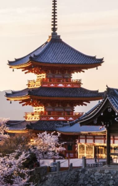 Things to do in Kyoto During the Rugby World Cup 2019
