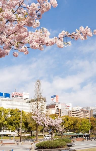 Where to stay in Nagoya – Best neighbourhoods guide