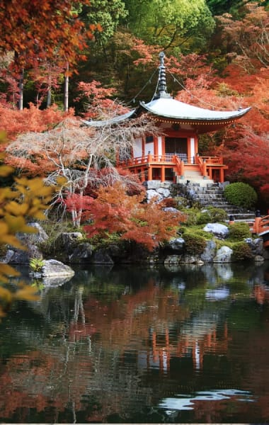 What To Do In Kyoto This Fall - Things To Do In September, October and November 2019