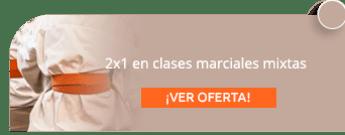2x1 en clases marciales mixtas - Artes Marciales Mixtas, Karate Y Kickboxing