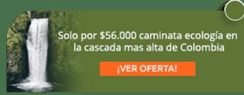 Solo por $56.000 caminata ecología en la cascada mas alta de Colombia - Colombia Expeditions