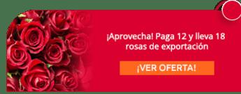 ¡Aprovecha! Paga 12 y lleva 18 rosas de exportación - Galería Floral