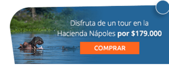 Disfruta de un tour en la Hacienda Nápoles por $179.000 - Amazonikos Viajes