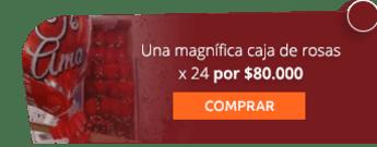 Una magnífica caja de rosas x 24 por $80.000 - Flores y Regalos Bogotá