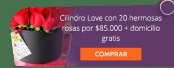 Cilindro Love con 20 hermosas rosas por $85.000 + domicilio gratis -  Flores y Regalos Bogotá