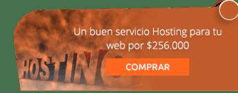 Un buen servicio Hosting para tu web por $256.000