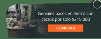Geniales bases en hierro con cactus por solo $215.000 - Marga Plantas