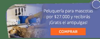 Peluquería para mascotas por $27.000 y recibirás ¡Gratis el antipulgas! - Peluqueria para Mascota