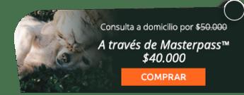 ¡Gratis desparasitación! Consulta a domicilio para tu mascota por solo $50.000 - AzzaVet
