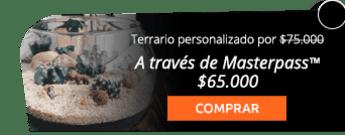 Regala un lindo terrario personalizado por $75.000