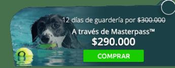 12 días de guardería para tu canino por solo $300.000 - Eko-Canes