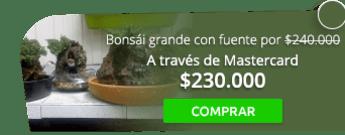 Natural Viveros - Bonsái grande con fuente por tan solo $240.000