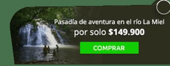 Vivir Viajando S.A.S - Pasadía de aventura en el río La Miel por $149.900