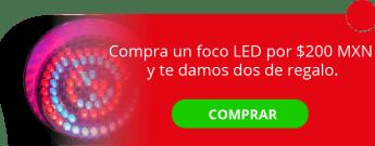 Compra un foco LED por $200 MXN y te damos dos de regalo. - MTI Mayorista en Tecnología Integral