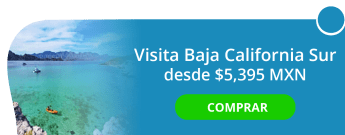 Visita Baja California Sur desde $5,395 MXN - Estilo travel