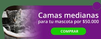 Camas medianas para tu mascota por $50.000 - Camas para mascotas