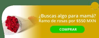 Sueño de enamorados/ Lover's Dream. Ramo de rosas $550 MXN. - Bromelia Flowers