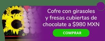 ¡El regalo perfecto para cualquier ocasión! Cofre con flores y fresas a $980 MXN - Delicias y Curiosidades Andr.