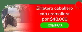 Belén N Diseños - Billetera caballero con cremallera por $48.000